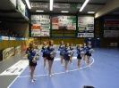 Handball in Aue